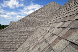 Homes roofed with asphalt shingles in Wayne